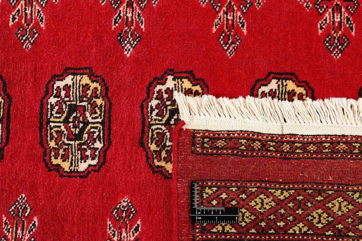 Dywan  Pakistan Bokhara  1393048 168x251cm