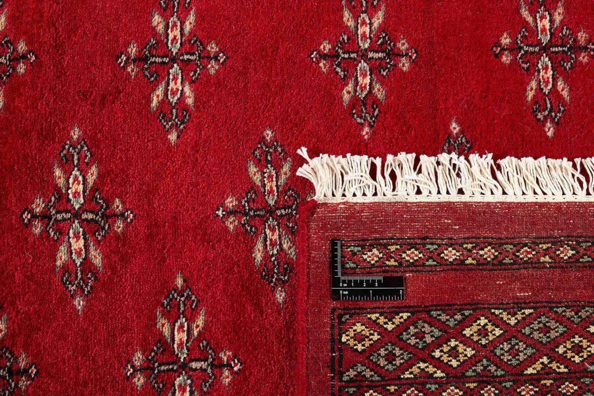 Dywan  Pakistan Bokhara 1407123 201x316cm